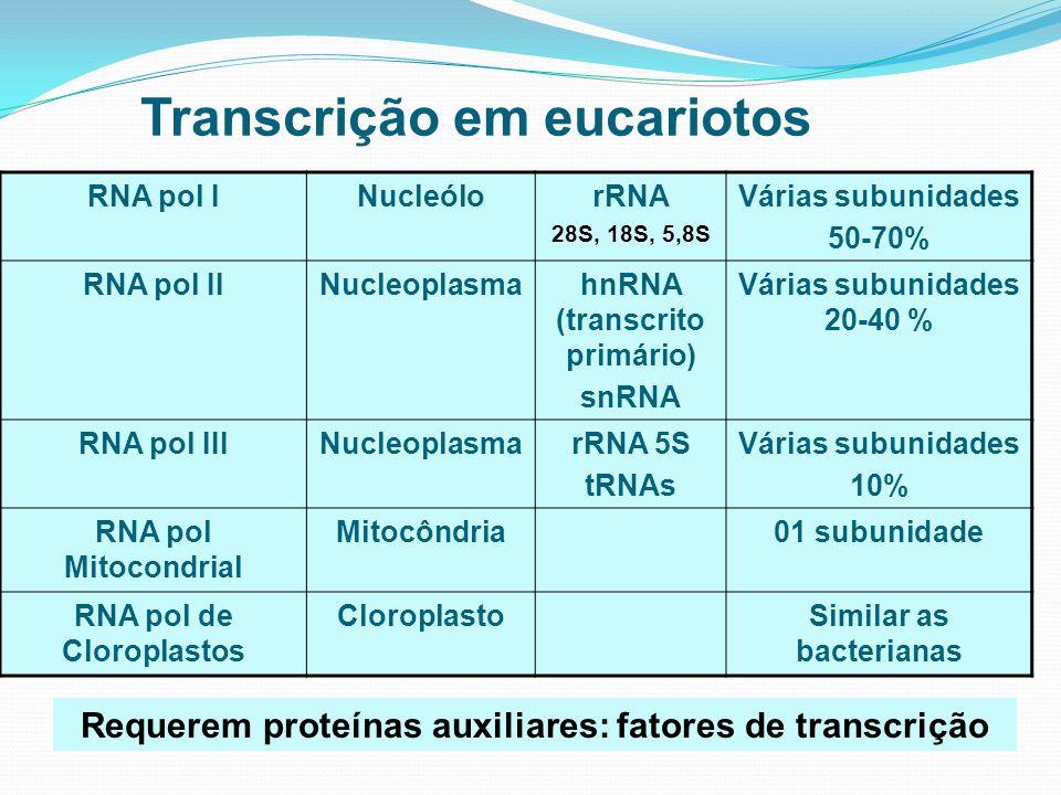 Transcrição em eucariotos Requerem proteínas auxiliares: fatores de transcrição RNA pol INucleólorRNA 28S, 18S, 5,8S Várias subunidades 50-70% RNA pol