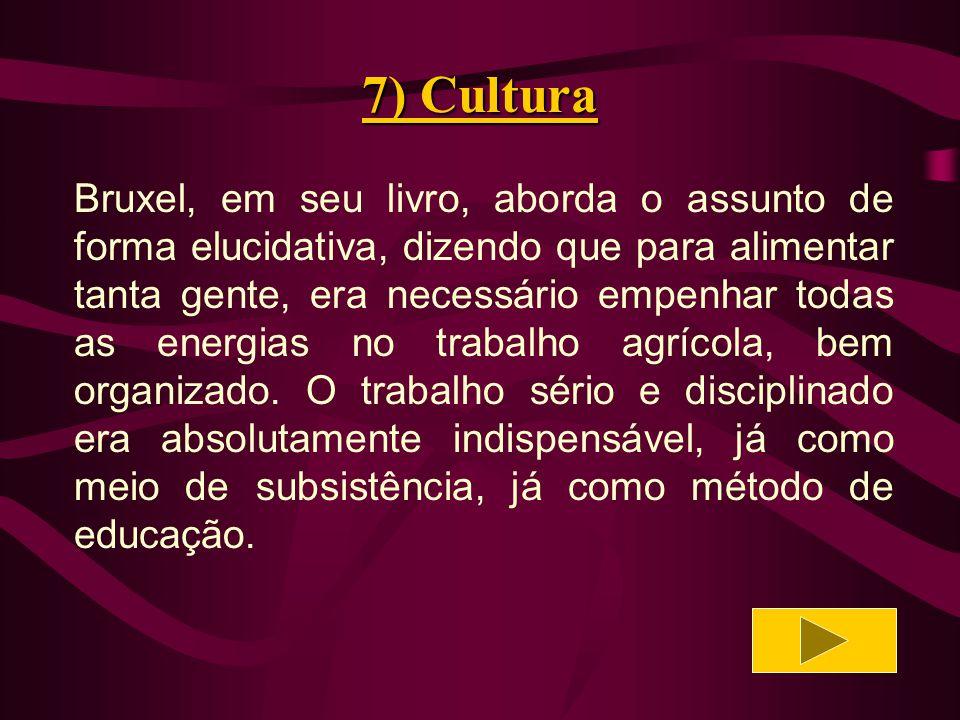7) Cultura Ao índio guarani não faltava boa saúde e força física, mas a forma como estava habituado a produzir dificultava-lhe o interesse e a constância no trabalho.