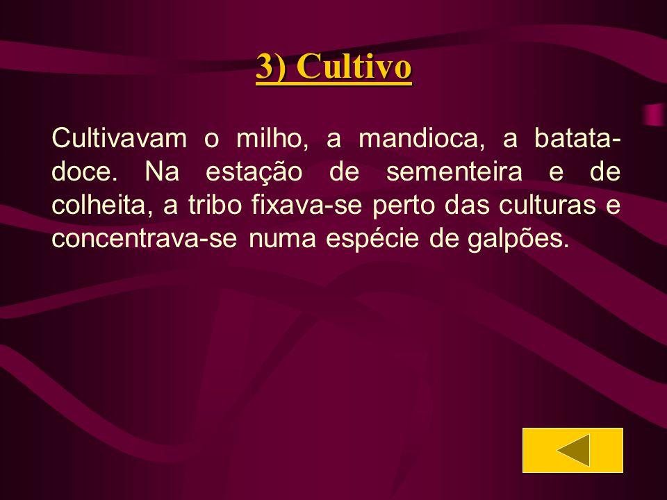 4) Poligamia Certas tribos admitiam a poligamia.