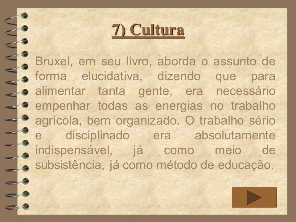 7) Cultura O índio guarani possuía uma saúde excelente bem como uma força física invejosa pelas pessoas não-índia, sua forma como estava habituado a trabalhar dificultava por interesses em outras atividades.