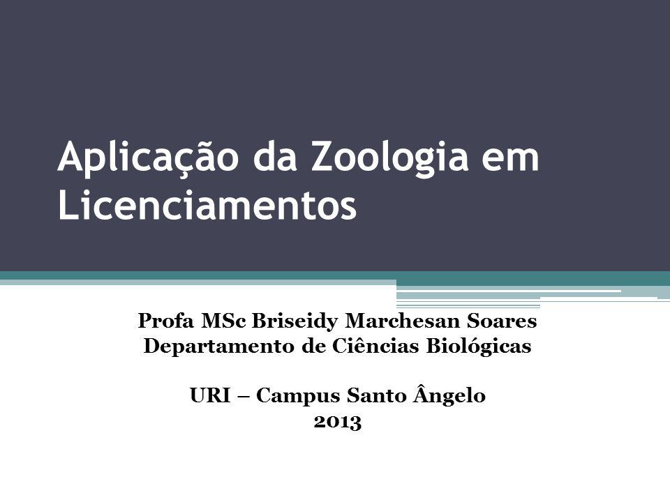 Aplicação da Zoologia em Licenciamentos Profa MSc Briseidy Marchesan Soares Departamento de Ciências Biológicas URI – Campus Santo Ângelo 2013