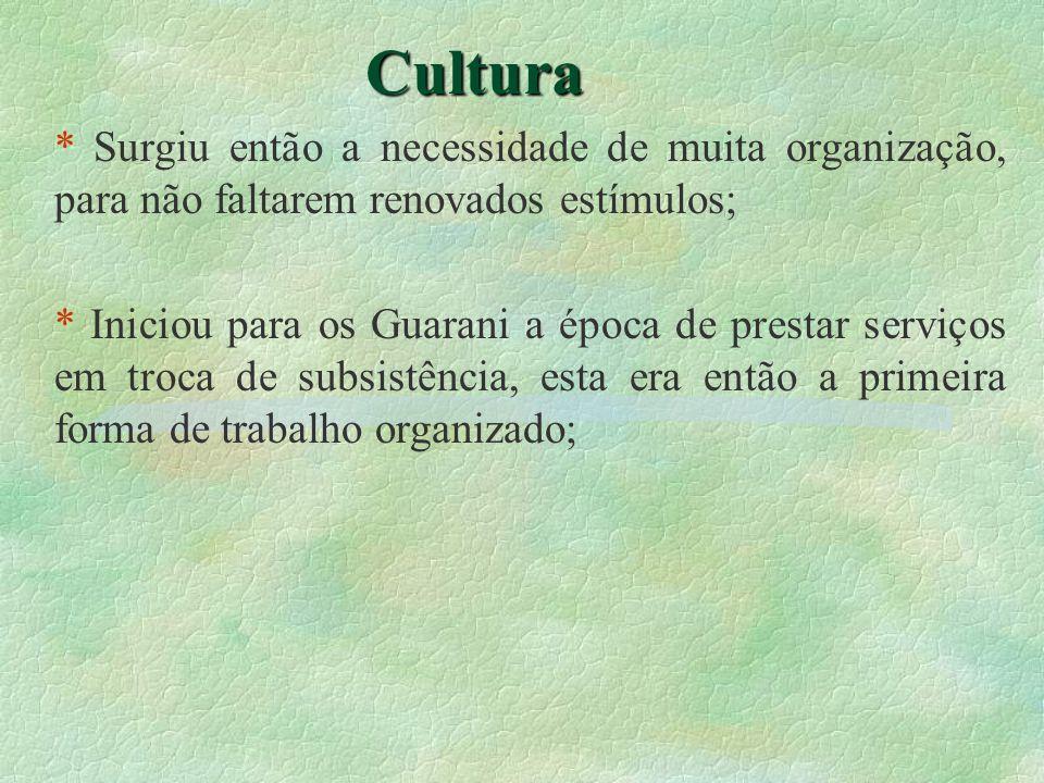 Cultura * Surgiu então a necessidade de muita organização, para não faltarem renovados estímulos; * Iniciou para os Guarani a época de prestar serviço