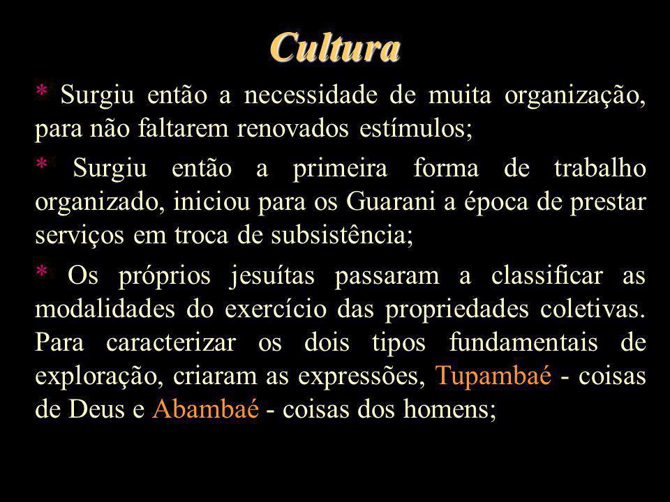 Cultura * Surgiu então a necessidade de muita organização, para não faltarem renovados estímulos; * Surgiu então a primeira forma de trabalho organiza