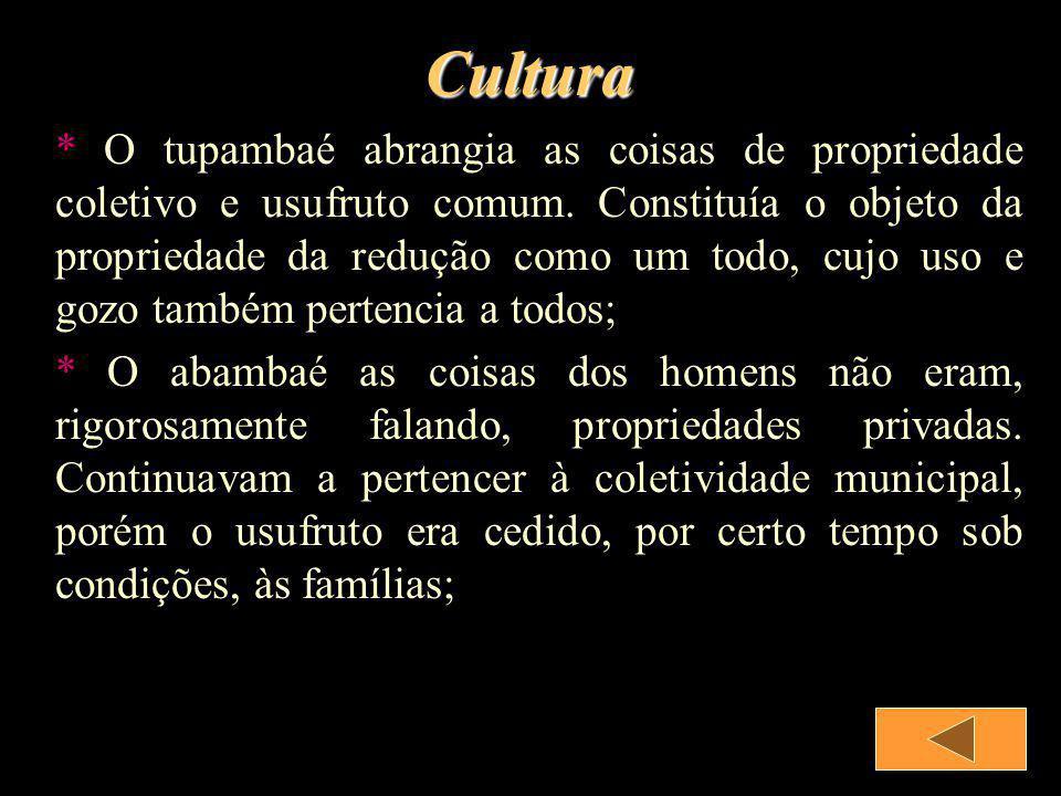 Aldeias * Por serem os Guarani horticultores de floresta, procuravam localizar suas aldeias em meio a floresta sub-tropical, em locais de terras férteis, para fazer suas roças; * A floresta tem a tarefa de abastecer a aldeia com caça e coleta de frutas, raízes e material para construção das suas casas;