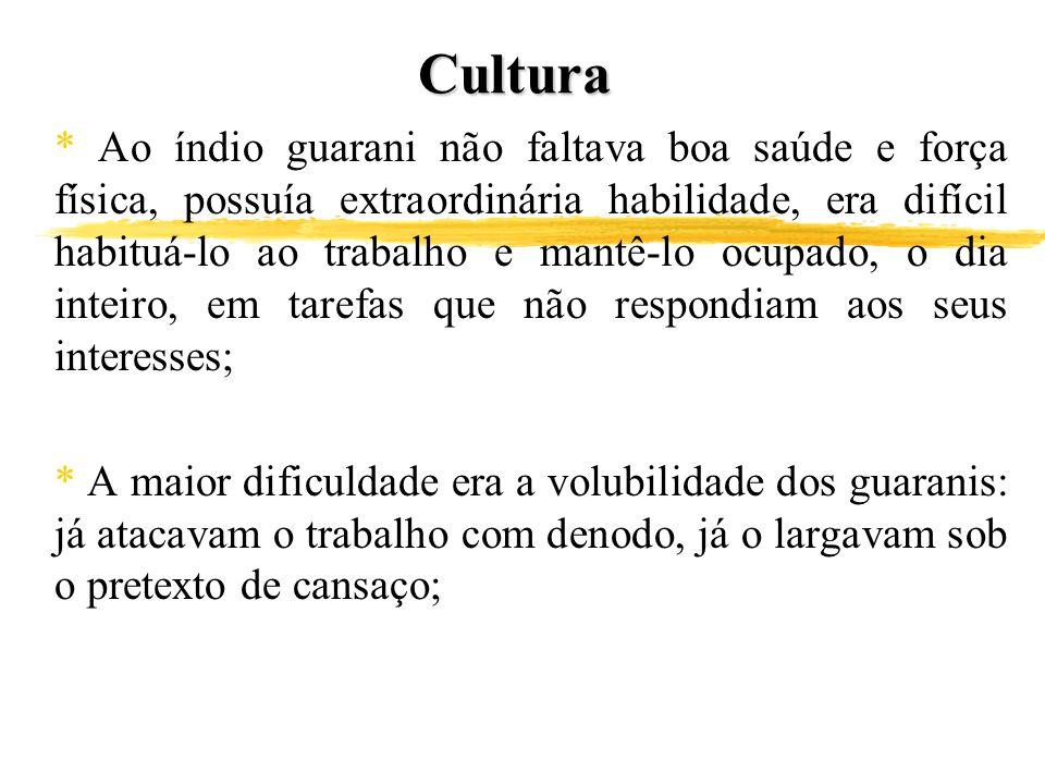 Cultura * Ao índio guarani não faltava boa saúde e força física, possuía extraordinária habilidade, era difícil habituá-lo ao trabalho e mantê-lo ocup