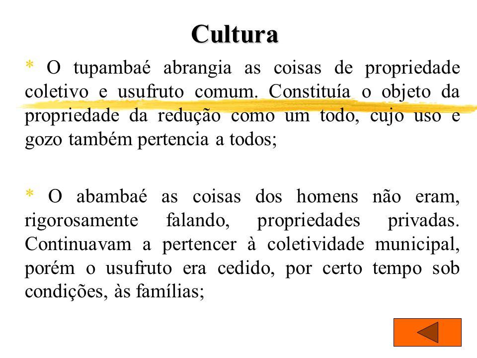 Cultura * O tupambaé abrangia as coisas de propriedade coletivo e usufruto comum. Constituía o objeto da propriedade da redução como um todo, cujo uso