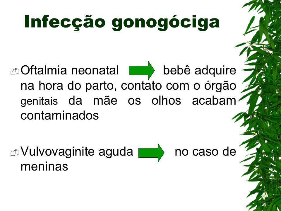 Gonorréia ou Blenorragia Bactéria - Neisseria gonorrheae do tipo diplococo Doença sexualmente transmissível (DST) Incubação de 4 dias aproximadamente