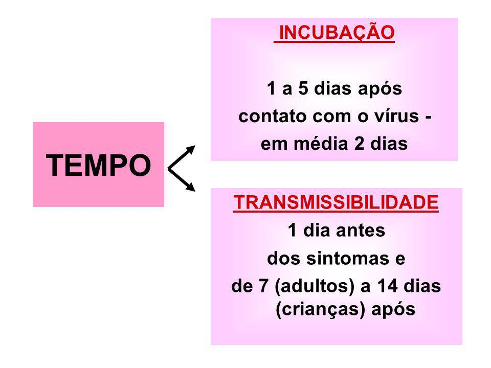 INCUBAÇÃO 1 a 5 dias após contato com o vírus - em média 2 dias TRANSMISSIBILIDADE 1 dia antes dos sintomas e de 7 (adultos) a 14 dias (crianças) após TEMPO
