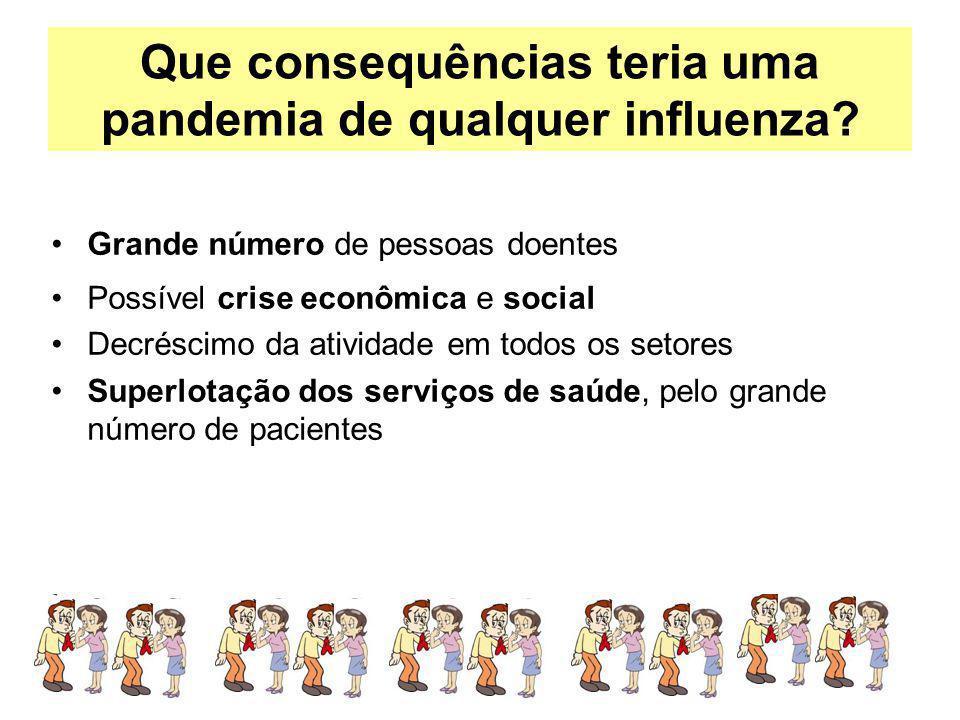 Que consequências teria uma pandemia de qualquer influenza? Grande número de pessoas doentes Possível crise econômica e social Decréscimo da atividade