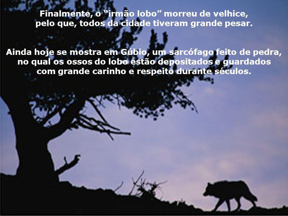 Com a promessa de nunca mais lesar nem homem nem animal, foi o lobo com Francisco até a cidade. Também o povo da cidade abandonou sua raiva e começou
