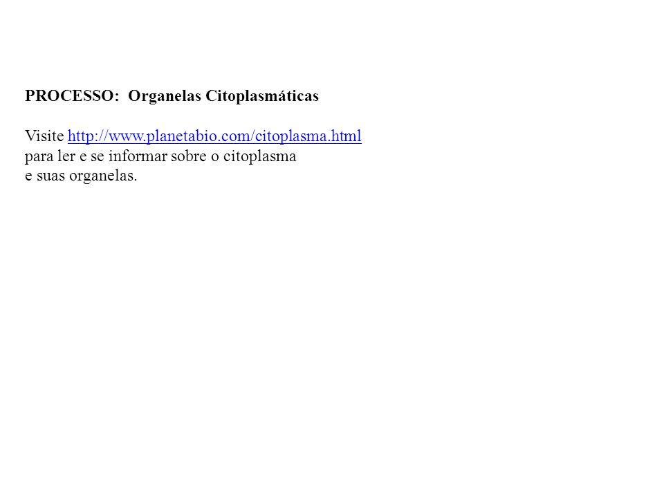 PROCESSO: Organelas Citoplasmáticas Visite http://www.planetabio.com/citoplasma.html http://www.planetabio.com/citoplasma.html para ler e se informar