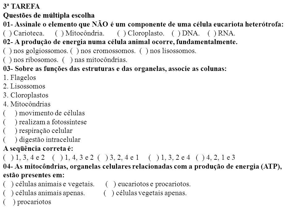 3ª TAREFA Questões de múltipla escolha 01- Assinale o elemento que NÃO é um componente de uma célula eucariota heterótrofa: ( ) Carioteca. ( ) Mitocôn
