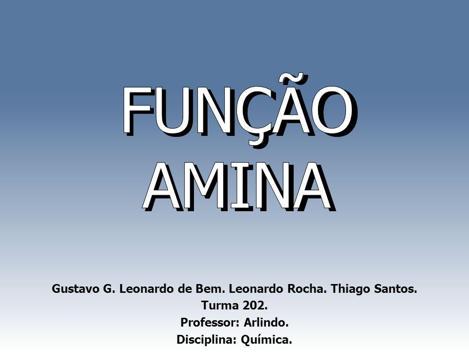 Gustavo G. Leonardo de Bem. Leonardo Rocha. Thiago Santos. Turma 202. Professor: Arlindo. Disciplina: Química.
