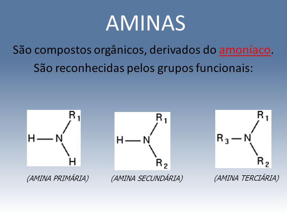 AMINAS São compostos orgânicos, derivados do amoníaco. São reconhecidas pelos grupos funcionais: (AMINA PRIMÁRIA)(AMINA SECUNDÁRIA) (AMINA TERCIÁRIA)