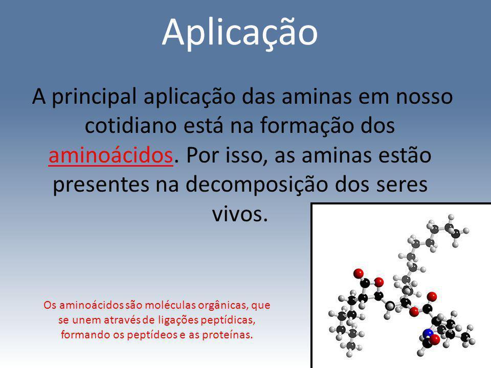 Aplicação A principal aplicação das aminas em nosso cotidiano está na formação dos aminoácidos. Por isso, as aminas estão presentes na decomposição do