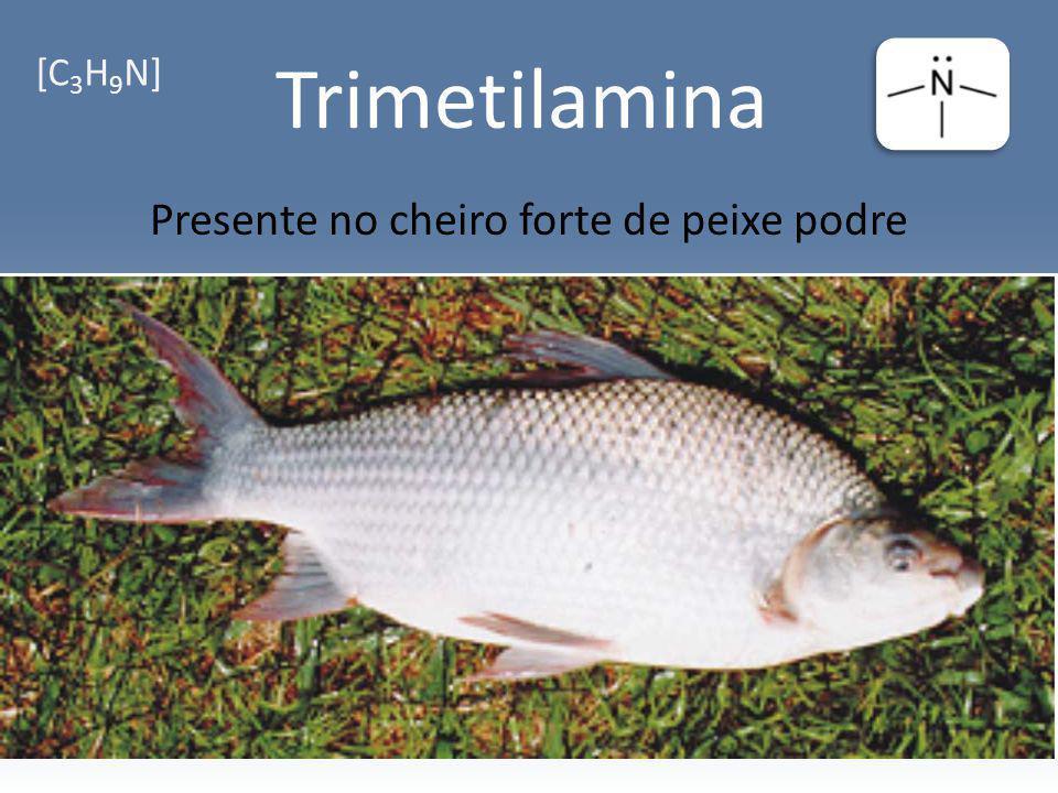 Trimetilamina Presente no cheiro forte de peixe podre [C 3 H 9 N]