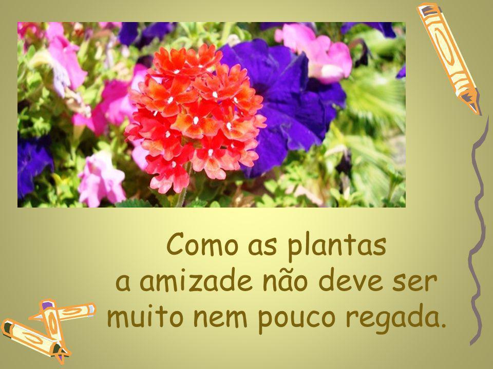 www.planetapowerpoint.com.br Como as plantas a amizade não deve ser muito nem pouco regada.