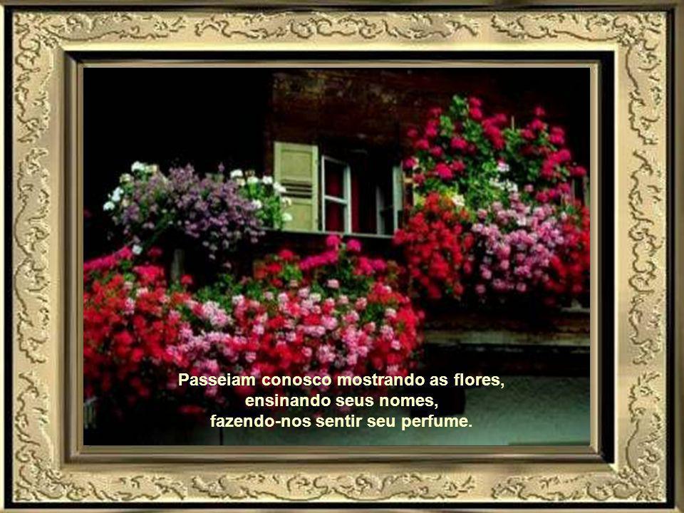 Passeiam conosco mostrando as flores, ensinando seus nomes, fazendo-nos sentir seu perfume.