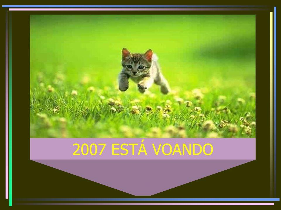 2007 ESTÁ VOANDO