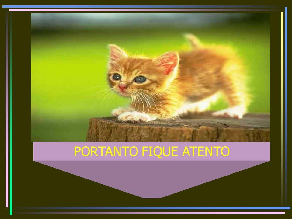 PORTANTO FIQUE ATENTO