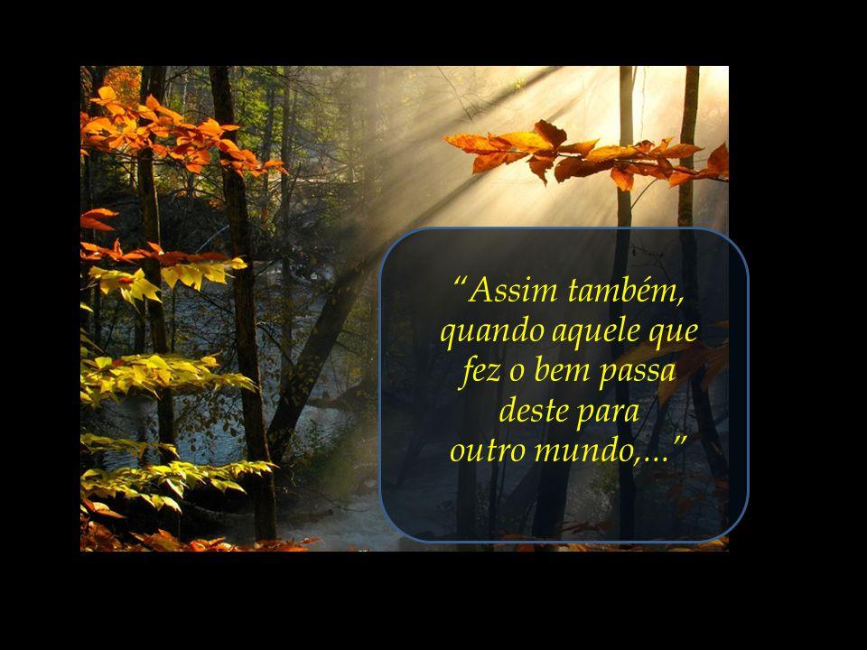 Aproveitar estes fugazes e preciosos dias terrenos para purificar o nosso coração, apurar os nossos dons espirituais,...