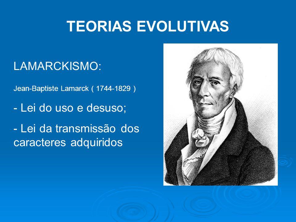 TEORIAS EVOLUTIVAS LAMARCKISMO: Jean-Baptiste Lamarck ( 1744-1829 ) - Lei do uso e desuso; - Lei da transmissão dos caracteres adquiridos