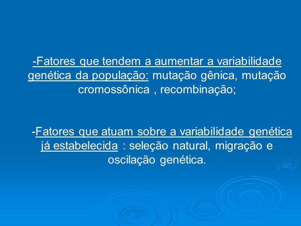 -Fatores que tendem a aumentar a variabilidade genética da população: mutação gênica, mutação cromossônica, recombinação; -Fatores que atuam sobre a v