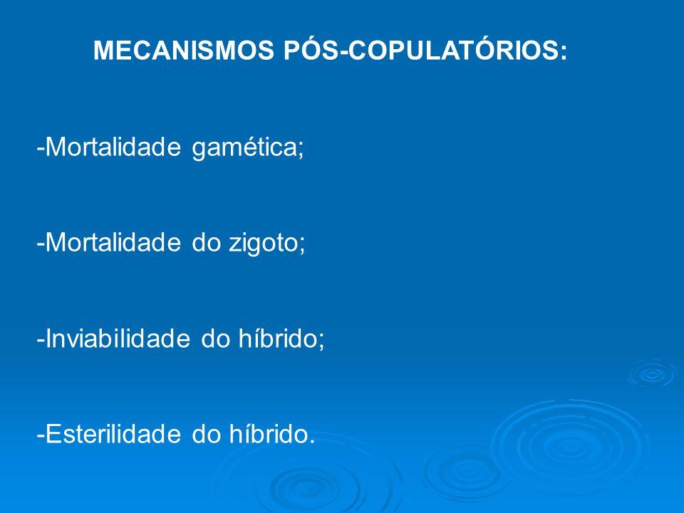 MECANISMOS PÓS-COPULATÓRIOS: -Mortalidade gamética; -Mortalidade do zigoto; -Inviabilidade do híbrido; -Esterilidade do híbrido.