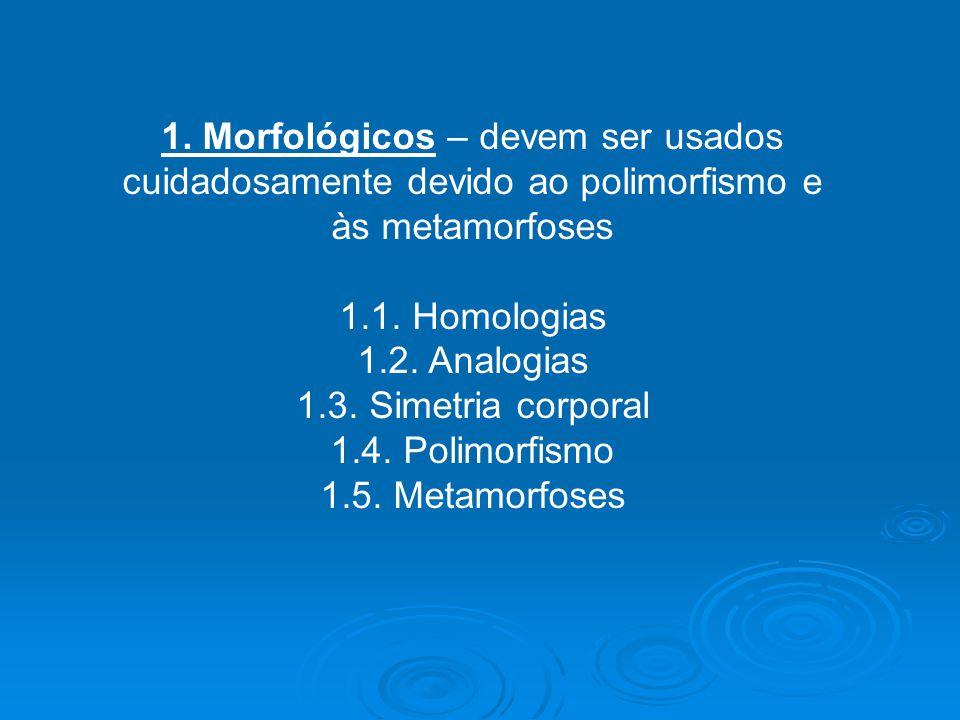 1. Morfológicos – devem ser usados cuidadosamente devido ao polimorfismo e às metamorfoses 1.1. Homologias 1.2. Analogias 1.3. Simetria corporal 1.4.