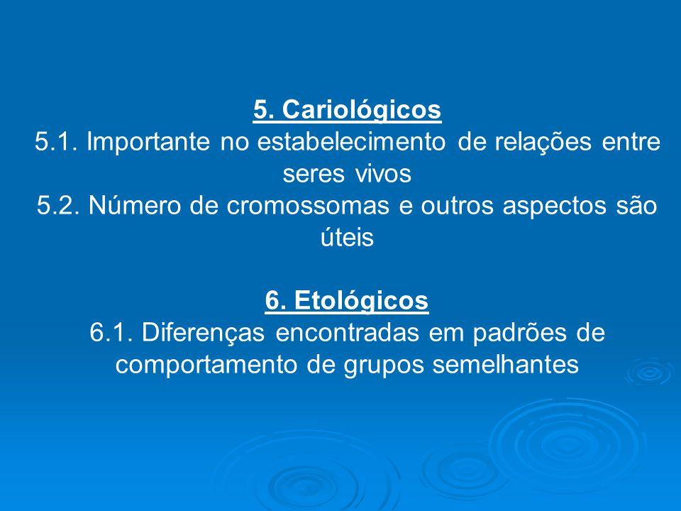 5. Cariológicos 5.1. Importante no estabelecimento de relações entre seres vivos 5.2. Número de cromossomas e outros aspectos são úteis 6. Etológicos