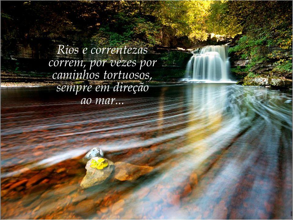 Rios e correntezas correm, por vezes por caminhos tortuosos, sempre em direção ao mar...