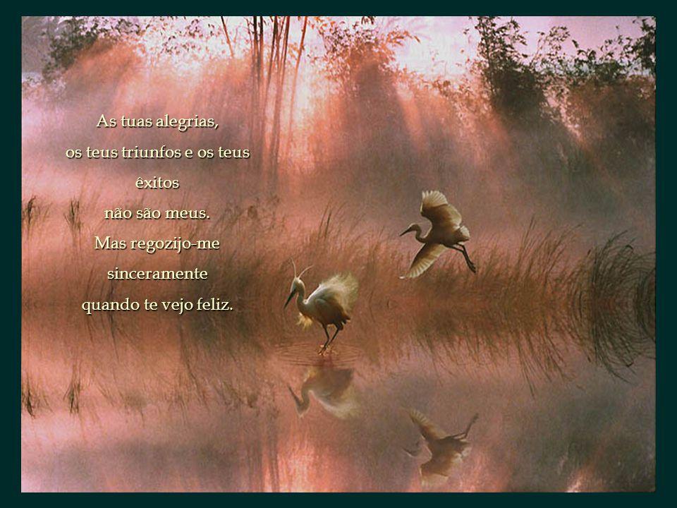 Basta que me queiras como amigo. Obrigado por o seres. J. L. Borges