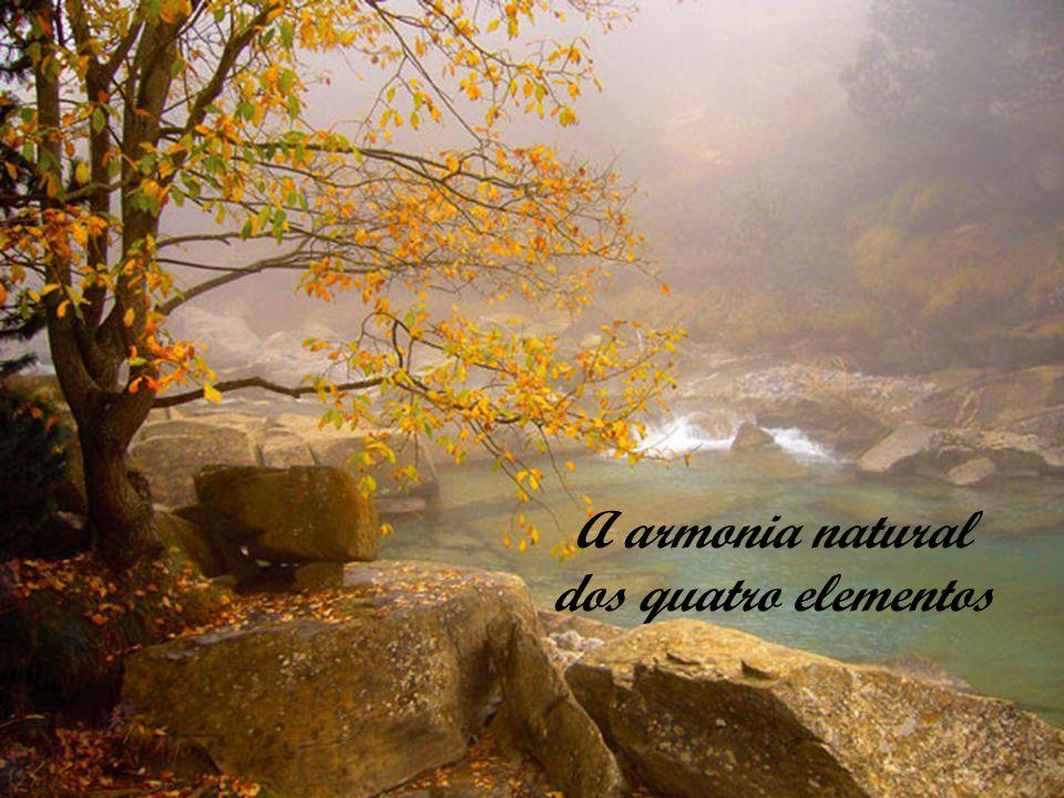 A armonia natural dos quatro elementos