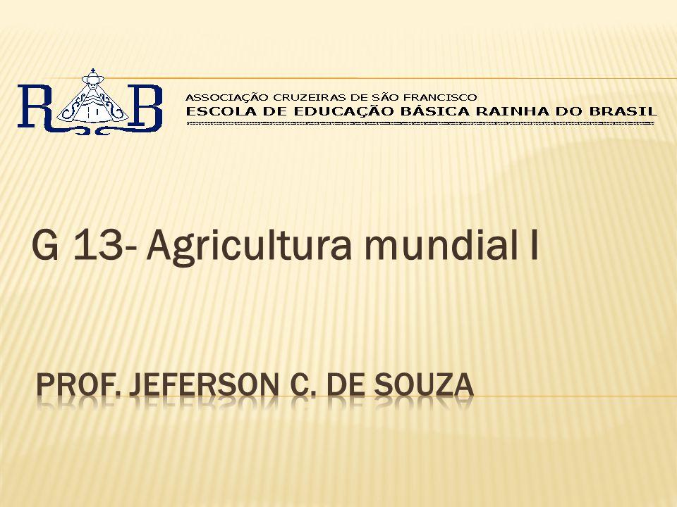 G 13- Agricultura mundial I
