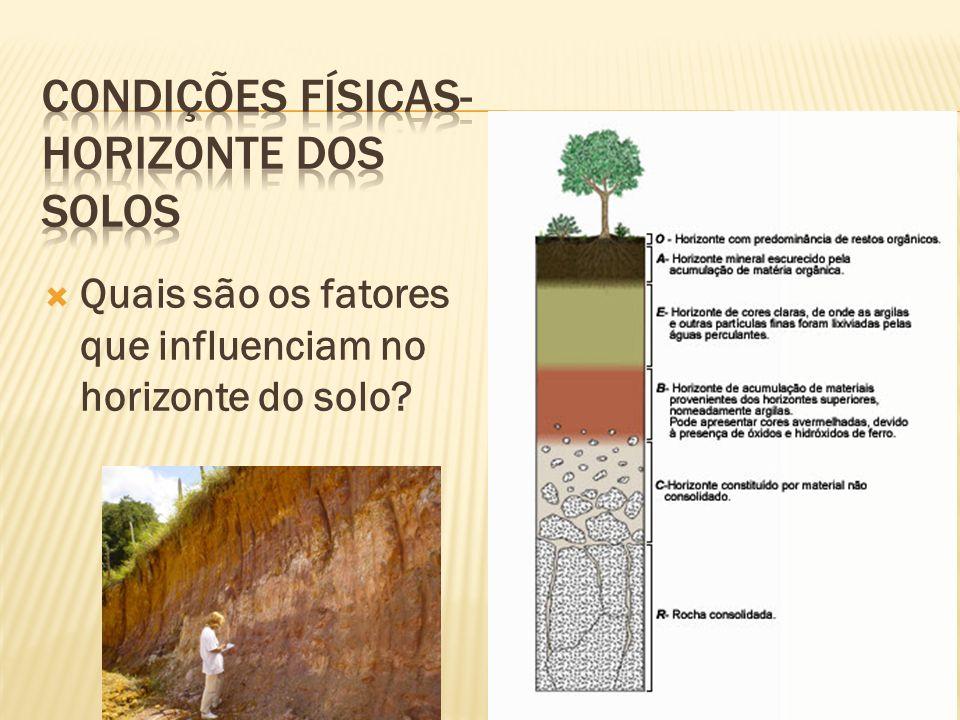 Quais são os fatores que influenciam no horizonte do solo?