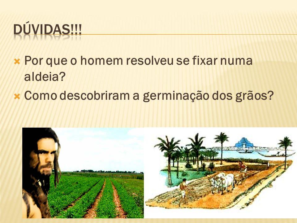 Por que o homem resolveu se fixar numa aldeia? Como descobriram a germinação dos grãos?