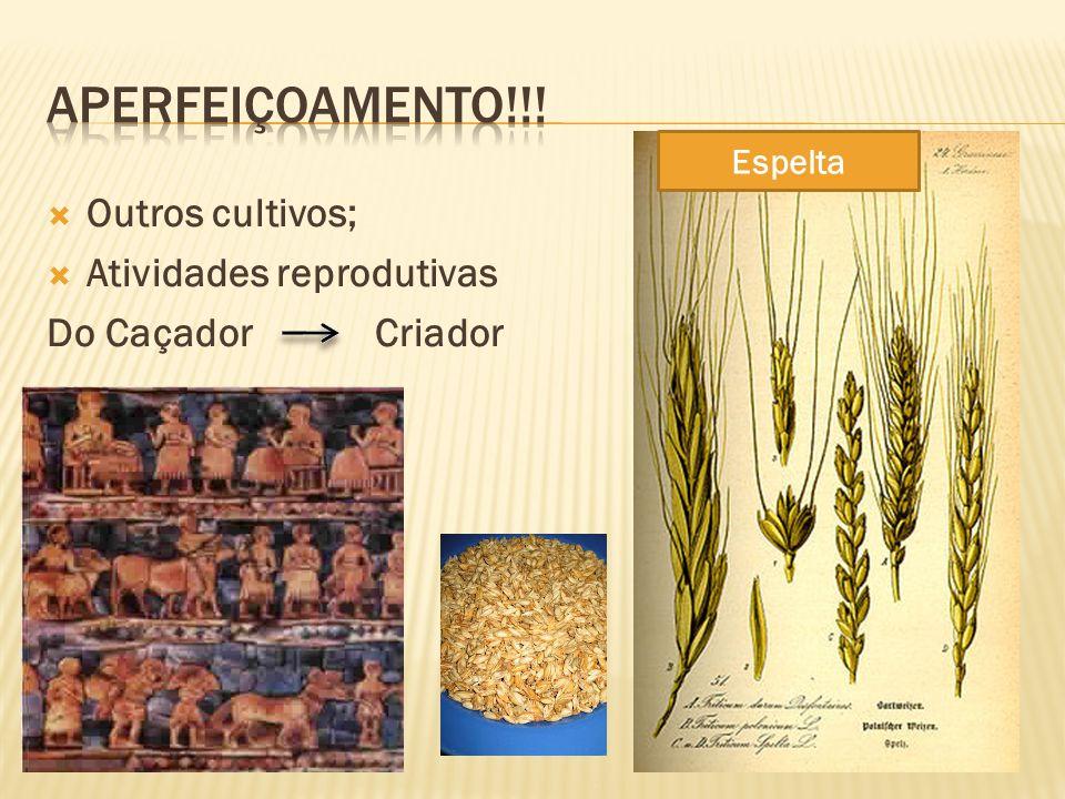 Outros cultivos; Atividades reprodutivas Do Caçador Criador Espelta