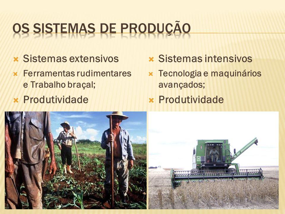 Sistemas extensivos Ferramentas rudimentares e Trabalho braçal; Produtividade Sistemas intensivos Tecnologia e maquinários avançados; Produtividade