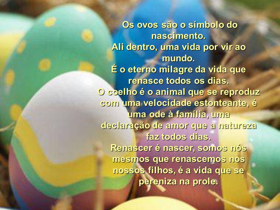 Os ovos são o símbolo do nascimento.Ali dentro, uma vida por vir ao mundo.