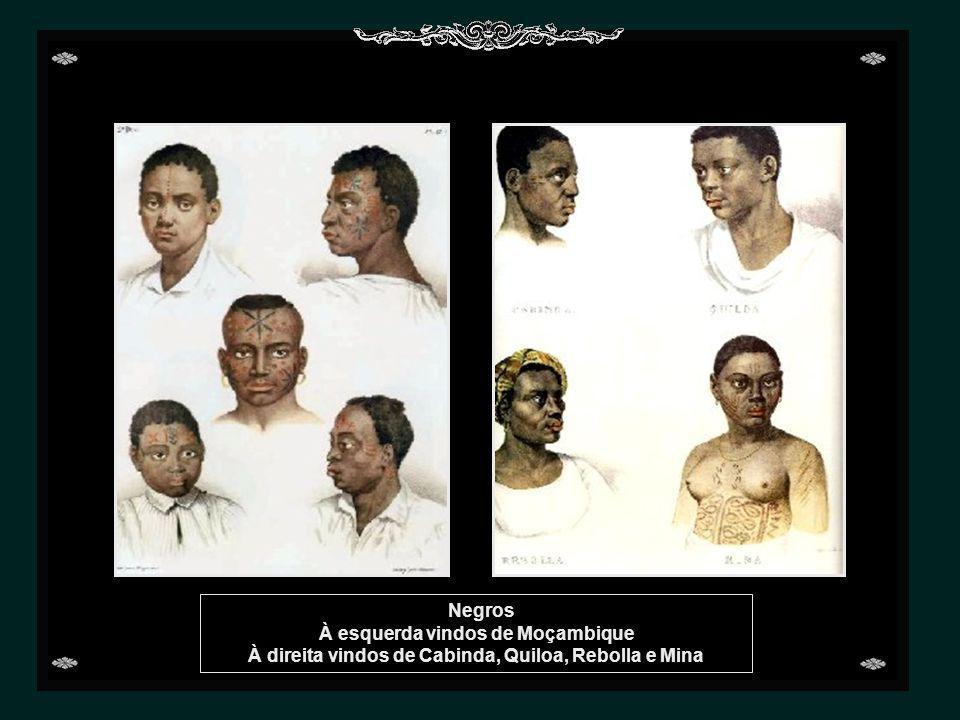 Negros À direita vindos de Benguela e Congo
