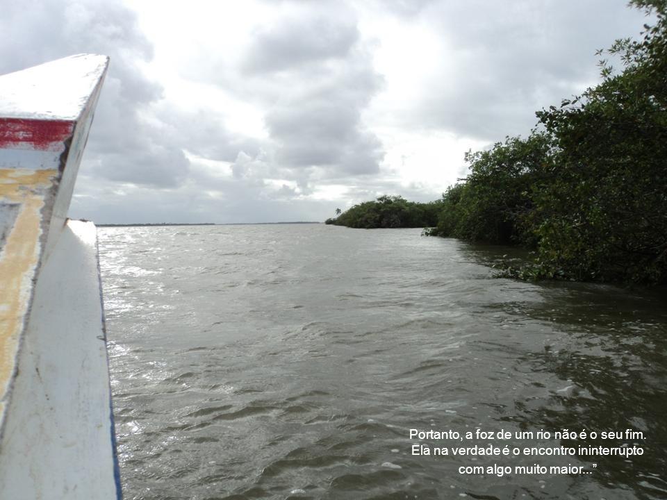 Diante do encontro do guerreiro com o mar alguém disse: Mesmo para os grandes rios existe o fim. Outro observador completou: Mas enquanto a caminhada
