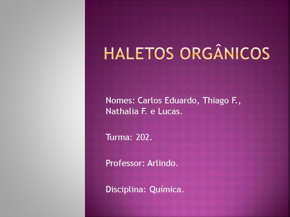 Nomes: Carlos Eduardo, Thiago F., Nathalia F.e Lucas.