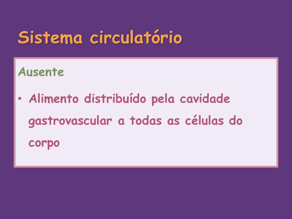Sistema circulatório Ausente Alimento distribuído pela cavidade gastrovascular a todas as células do corpo