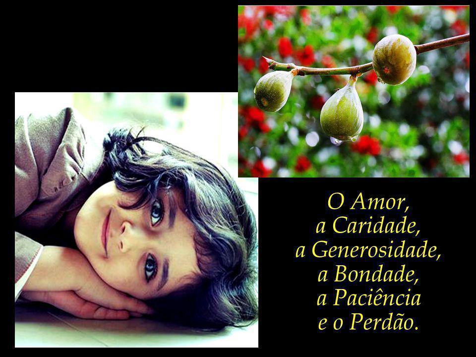 Que enriqueçam as suas vidas e o mundo por meio do cultivo dos mais altos frutos da árvore da existência.