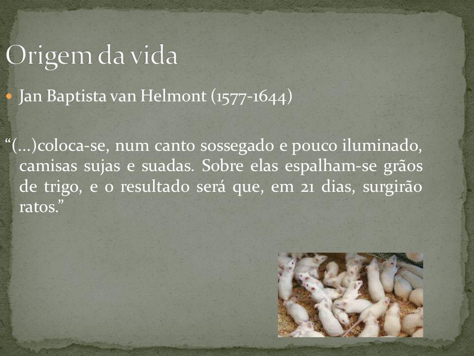 Jan Baptista van Helmont (1577-1644) (...)coloca-se, num canto sossegado e pouco iluminado, camisas sujas e suadas. Sobre elas espalham-se grãos de tr