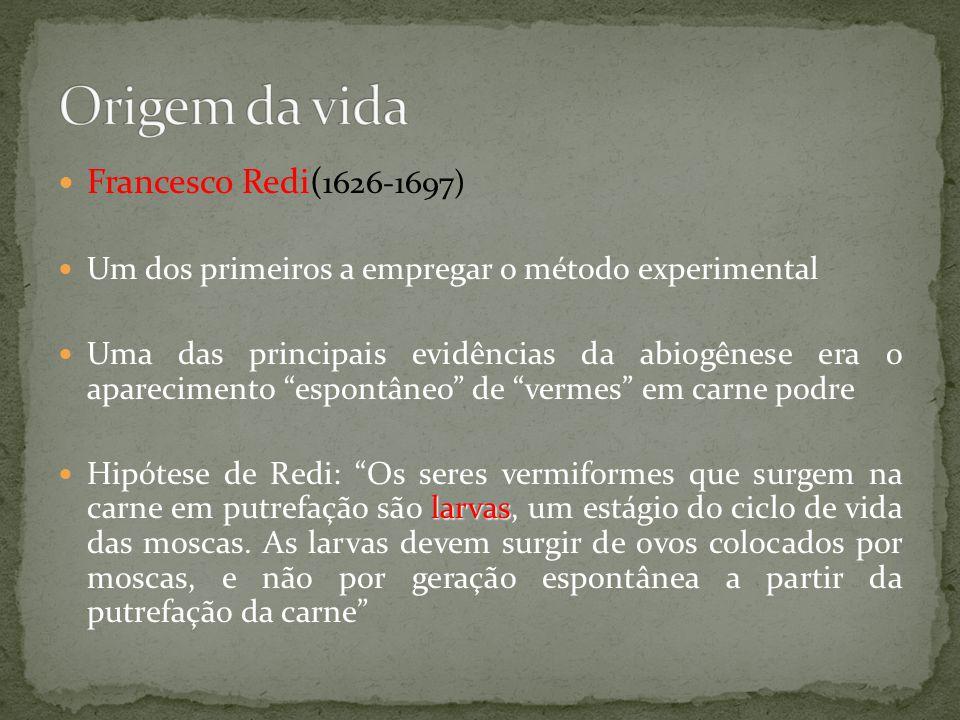 Francesco Redi( 1626-1697) Um dos primeiros a empregar o método experimental Uma das principais evidências da abiogênese era o aparecimento espontâneo