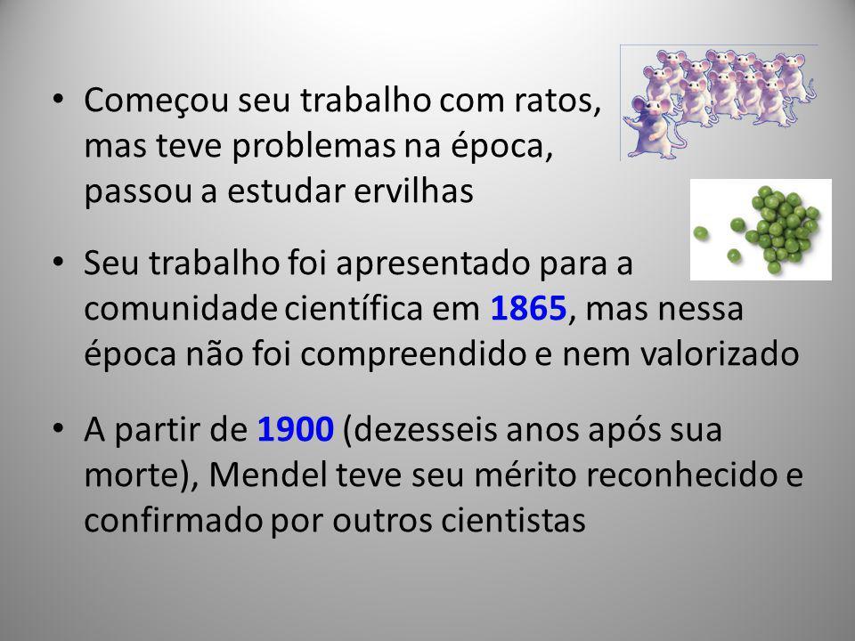 Começou seu trabalho com ratos, mas teve problemas na época, passou a estudar ervilhas Seu trabalho foi apresentado para a comunidade científica em 18