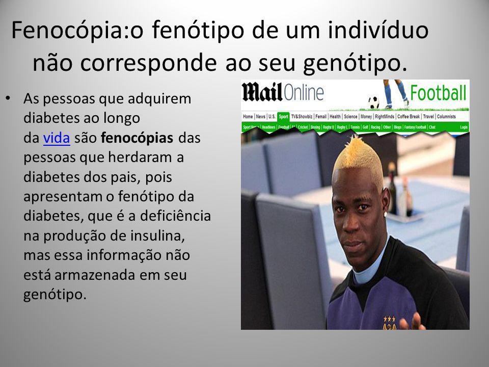 Fenocópia:o fenótipo de um indivíduo não corresponde ao seu genótipo. As pessoas que adquirem diabetes ao longo da vida são fenocópias das pessoas que
