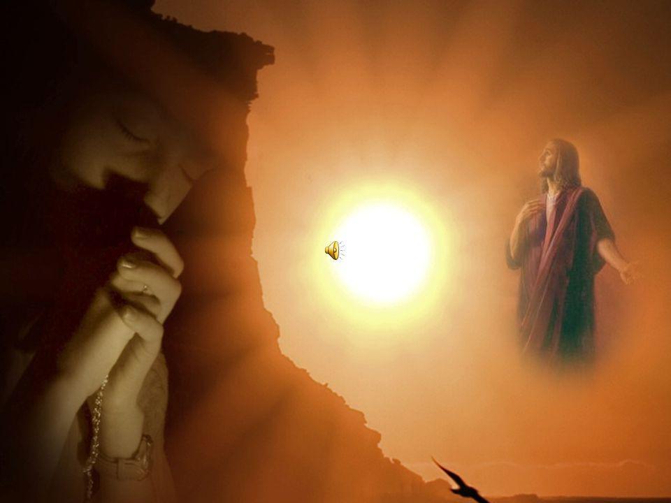 Que vá a todos aqueles que neste momento transpõem o pórtico da vida terrena para a espiritual, para que tenham um guia e o Vosso perdão.