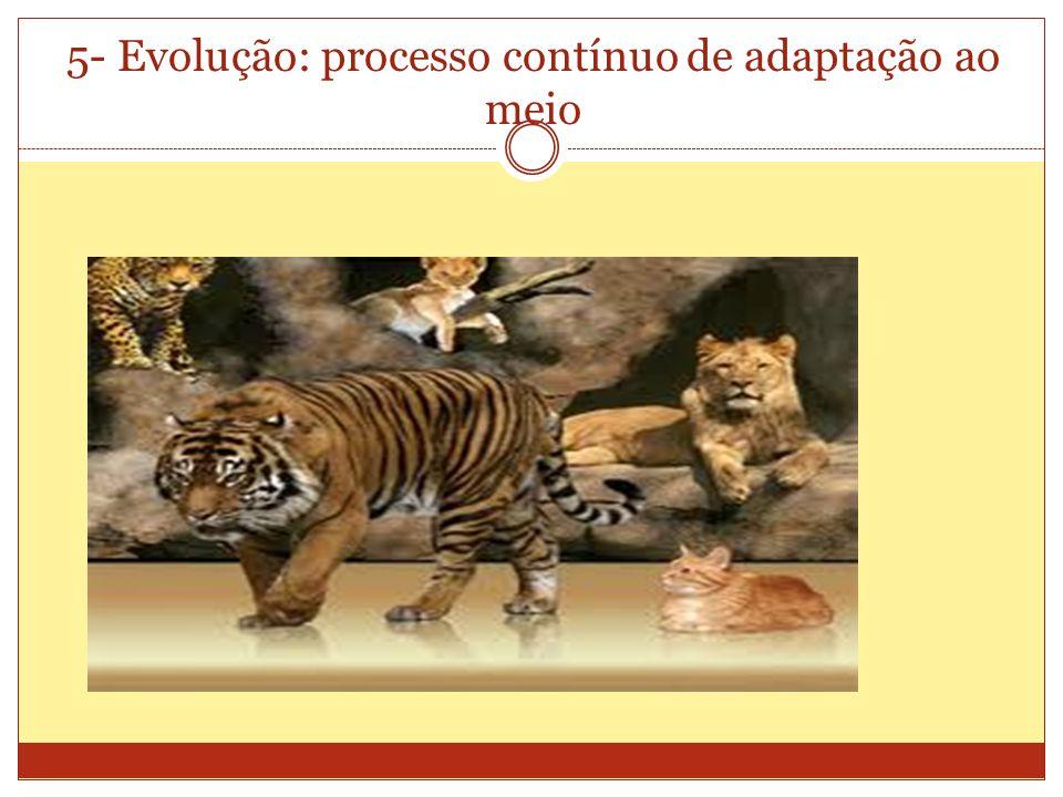 5- Evolução: processo contínuo de adaptação ao meio